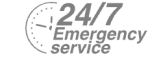 24/7 Emergency Service Pest Control in Harefield, Denham, UB9. Call Now! 020 8166 9746